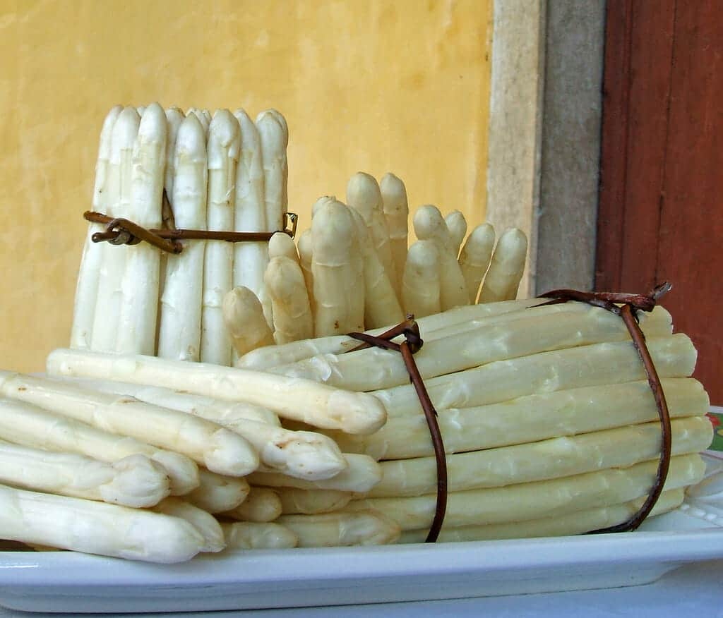 White asparagus of Bassano